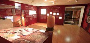 Museo del Vino de la Denominación de Origen Campo de Borja Turiismo sin barreras Rehatrans